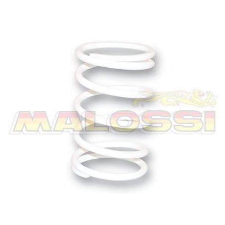 MUELLE EMBRAGUE MALOSSI 2913344WO KYMCO XCITING 500 BLANCO 13%