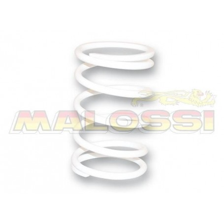 Muelle embrague Malossi 2914120WO Yamaha Majesty 400 blanco