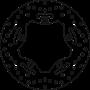 Disco de Freno Sym Maxsym I Abs 400 2017- Trasero Fijo Brembo 275x4,5