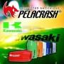 Protector de Motor Kawasaki Versys 650 15-18 Pelacrash