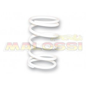 Muelle Embrague Kymco Xciting 500 Malossi 2913344WO Blanco