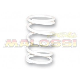 Muelle Embrague Malossi 2911478WO Blanco